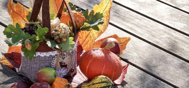 Výstava ovocia, zeleniny a jesenných inšpirácií