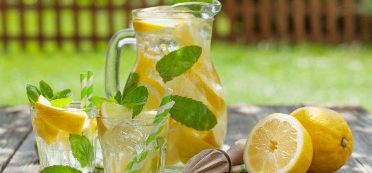 Ochutnávka bylinkovo-ovocných limonád